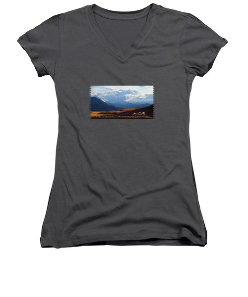 Mt. Denali National Park Women's V-Neck