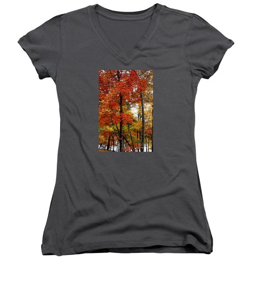 Multi-colored Leaves Women's V-Neck T-Shirt (Junior Cut) by Barbara Bowen