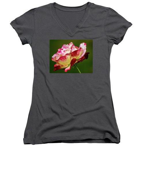 Multi-colored Rose Women's V-Neck