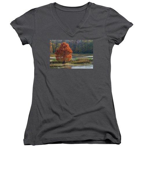 Women's V-Neck T-Shirt (Junior Cut) featuring the photograph Muscatatuck - D009967 by Daniel Dempster