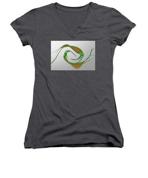 Music Takes Flight Women's V-Neck T-Shirt (Junior Cut) by Lenore Senior