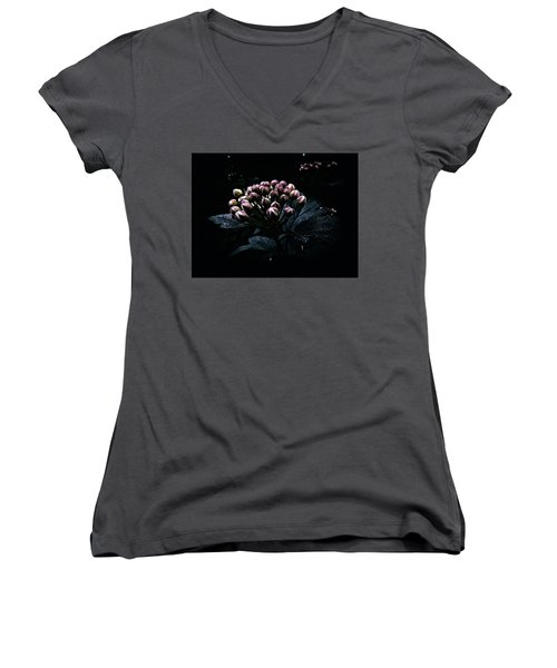 Muted At Dusk Women's V-Neck (Athletic Fit)