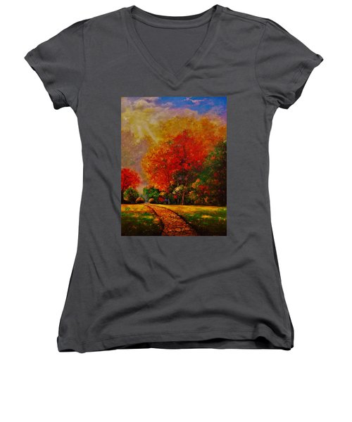 My Favorite Park Women's V-Neck T-Shirt (Junior Cut) by Emery Franklin