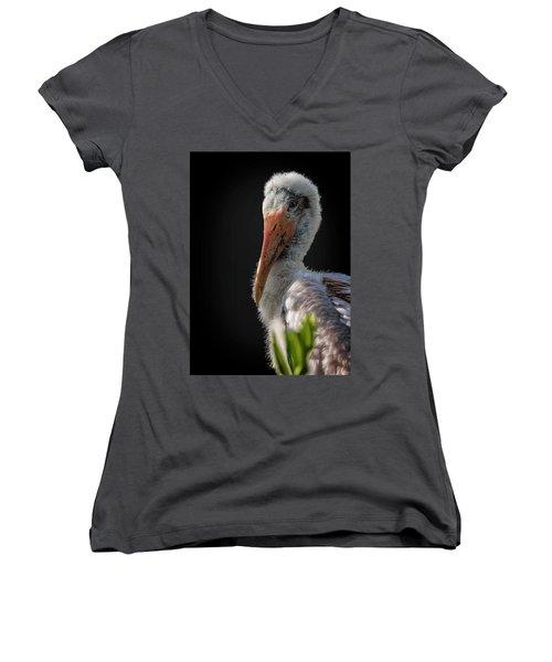 My First Sitting Women's V-Neck T-Shirt (Junior Cut) by Cyndy Doty