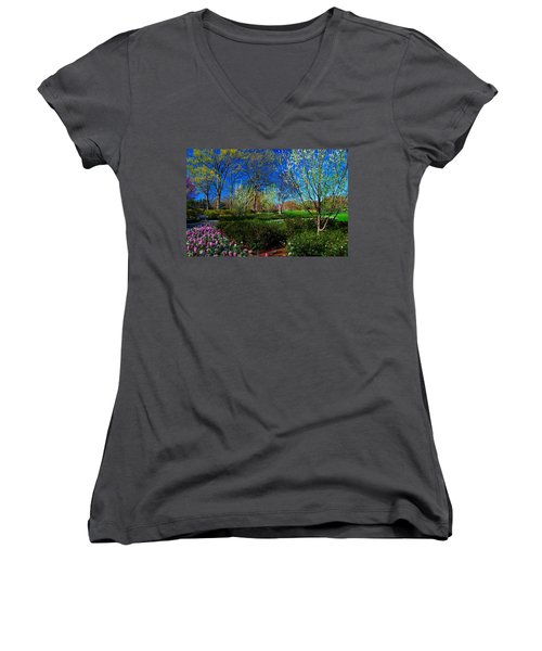 My Garden In Spring Women's V-Neck T-Shirt (Junior Cut) by Diana Mary Sharpton