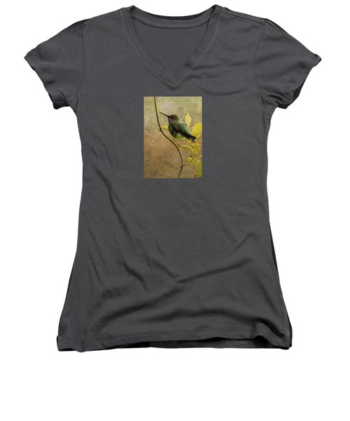 My Greeting For This Day Women's V-Neck T-Shirt (Junior Cut) by I'ina Van Lawick