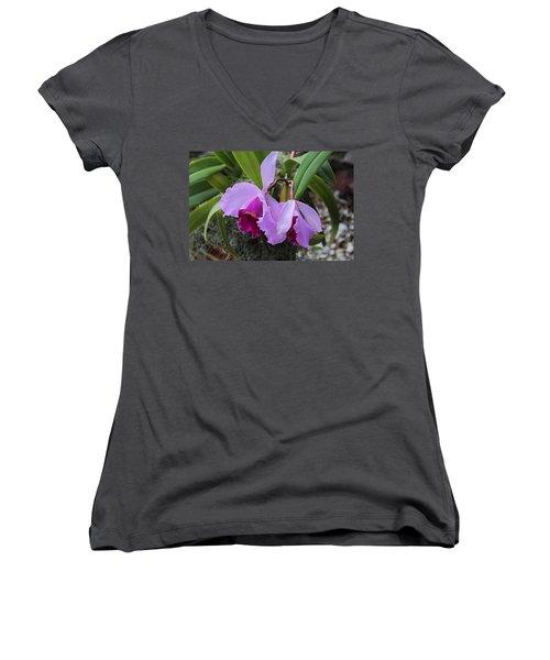 Women's V-Neck T-Shirt featuring the photograph My Orbit by Michiale Schneider