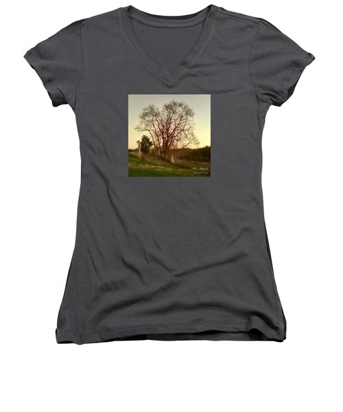 My Tree Has A Soul  Women's V-Neck T-Shirt (Junior Cut) by Delona Seserman