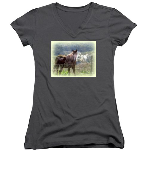 Mystic Horses Women's V-Neck (Athletic Fit)