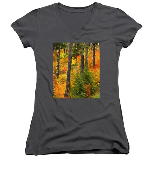 N W Autumn Women's V-Neck T-Shirt (Junior Cut) by Wes and Dotty Weber