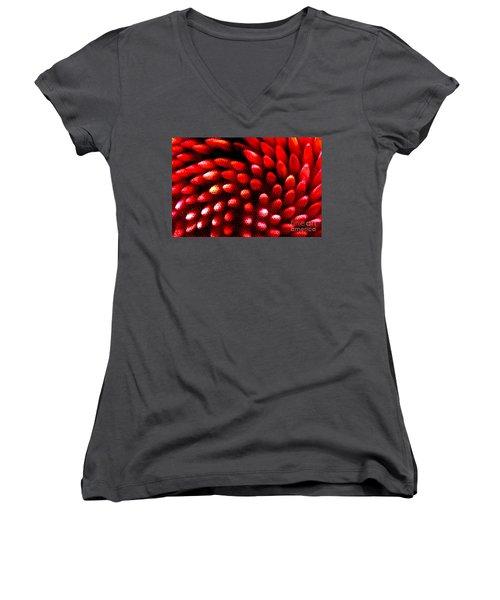 Naked Porcupine Women's V-Neck