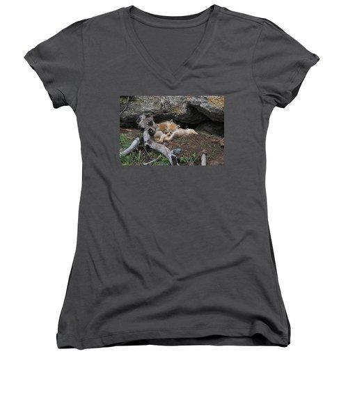 Women's V-Neck T-Shirt (Junior Cut) featuring the photograph Nap Time by Steve Stuller