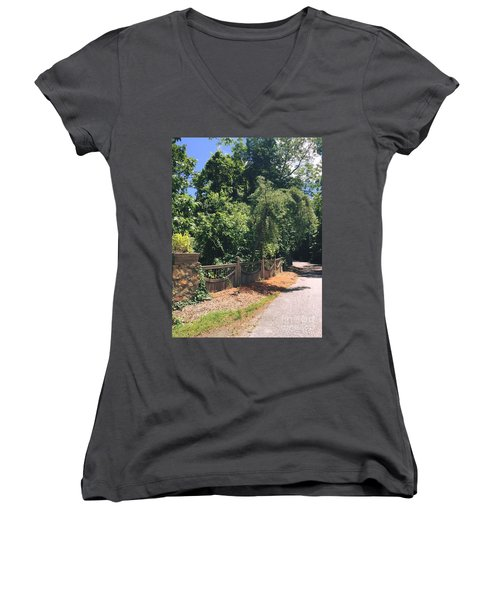 Natural Journey Women's V-Neck T-Shirt