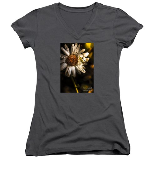 Nature Fine Art Summer Flower With Insect Women's V-Neck (Athletic Fit)