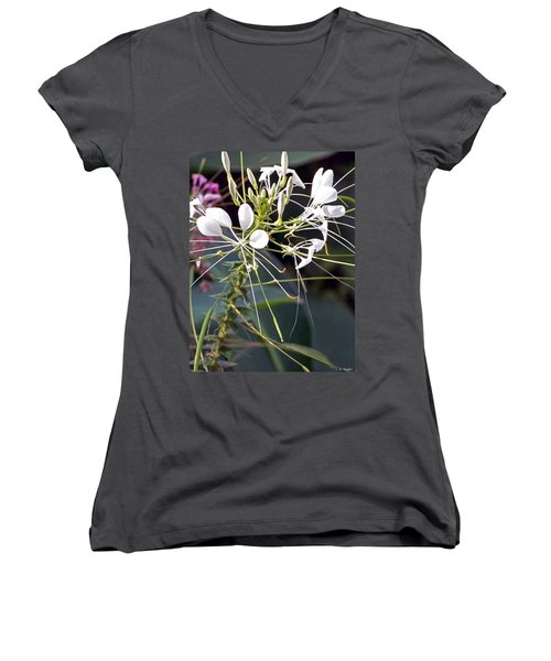 Nature's Design Women's V-Neck (Athletic Fit)