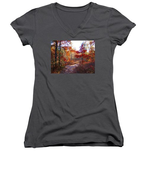 Nature's Expression-17 Women's V-Neck T-Shirt