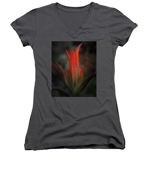 Nature's Fire Women's V-Neck