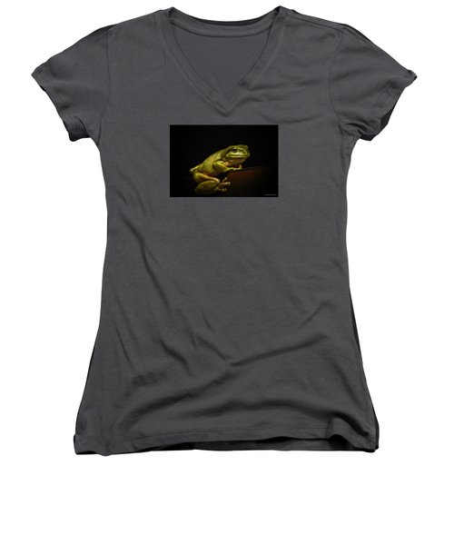 Natures Green 01 Women's V-Neck T-Shirt (Junior Cut) by Kevin Chippindall