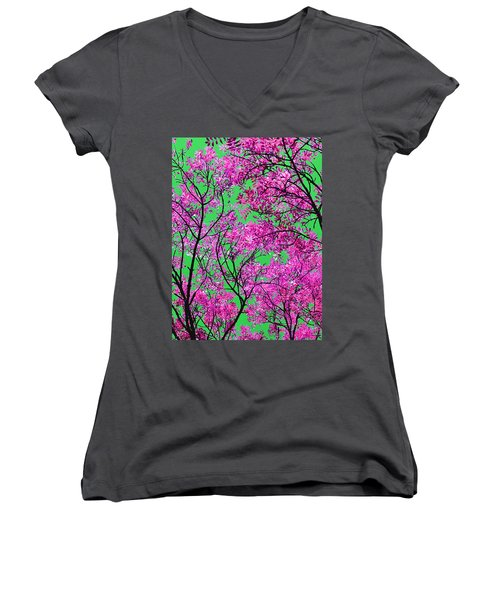 Natures Magic - Pink And Green Women's V-Neck T-Shirt