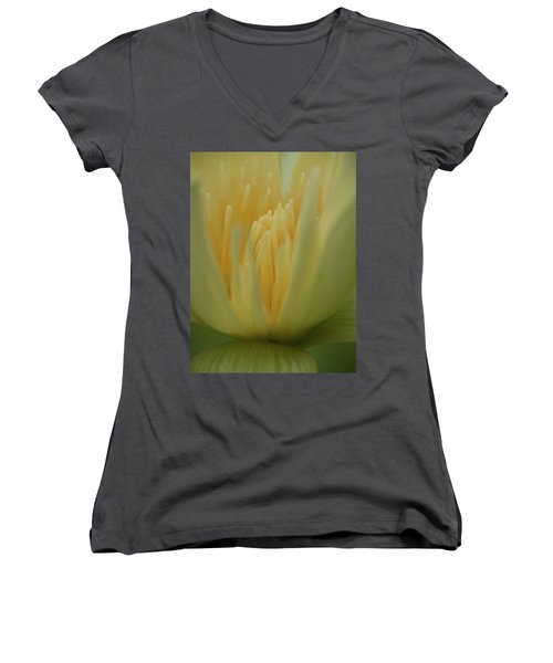 Natures Reflection Women's V-Neck
