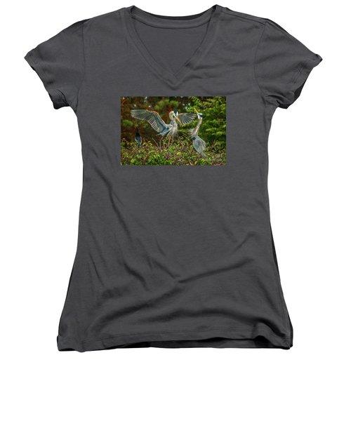Nest Landing Women's V-Neck T-Shirt (Junior Cut) by Tom Claud