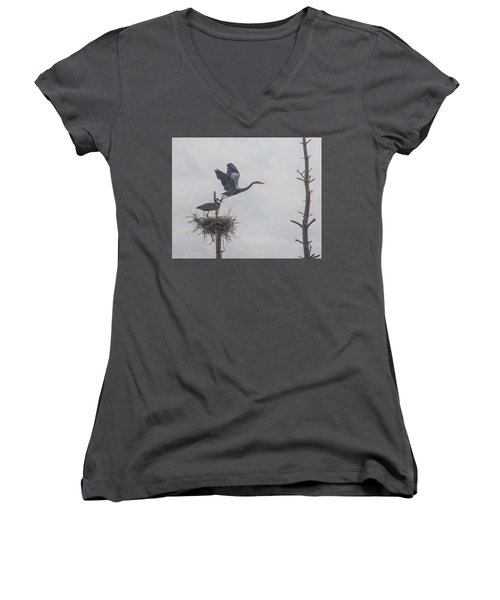 Nesting Great Blue Heron Women's V-Neck (Athletic Fit)