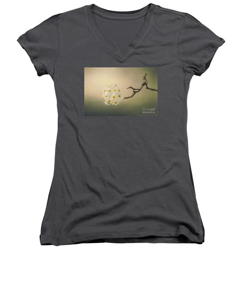 New Awakening Women's V-Neck