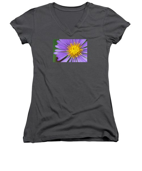 New England Aster Women's V-Neck (Athletic Fit)