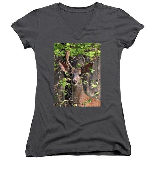Mule Deer Buck Women's V-Neck (Athletic Fit)