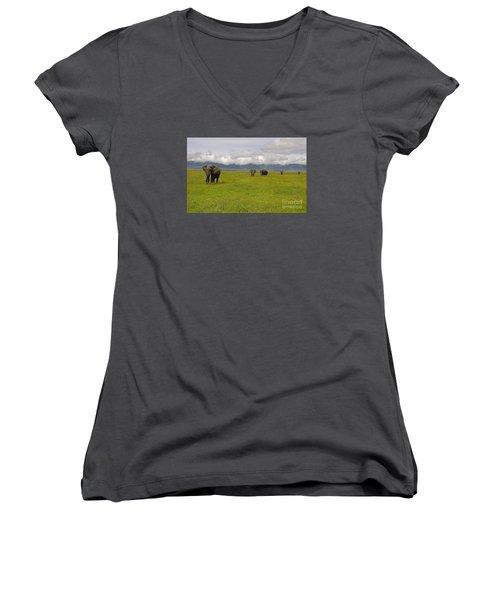 Ngorongoro Elephants-signed-#0135 Women's V-Neck T-Shirt