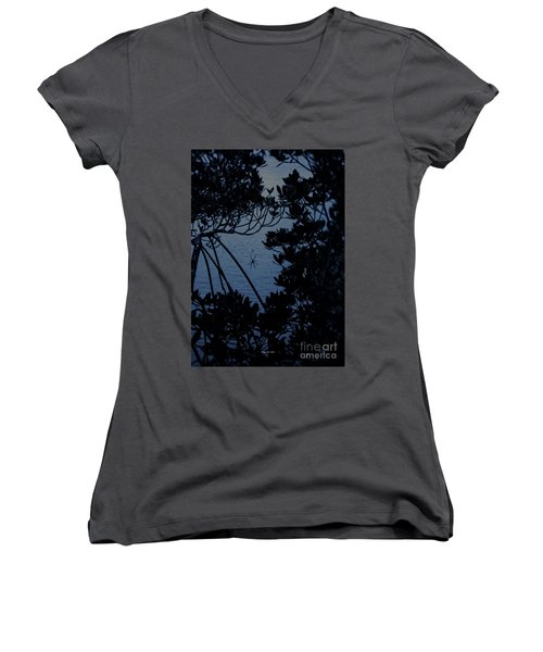 Women's V-Neck T-Shirt featuring the photograph Night Banana Spider by Megan Dirsa-DuBois
