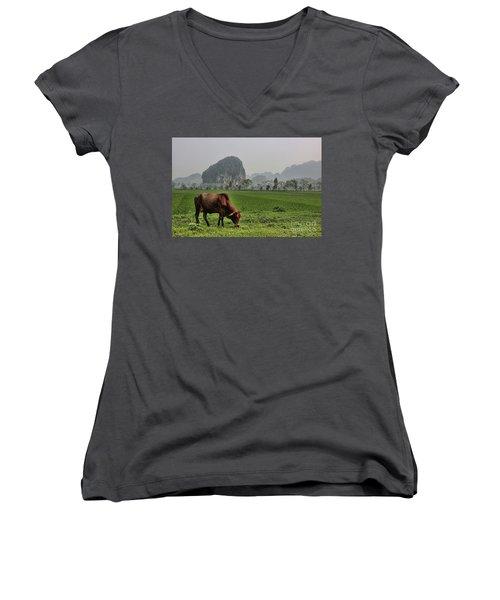 Ninh Binh Reserve  Women's V-Neck T-Shirt (Junior Cut) by Chuck Kuhn