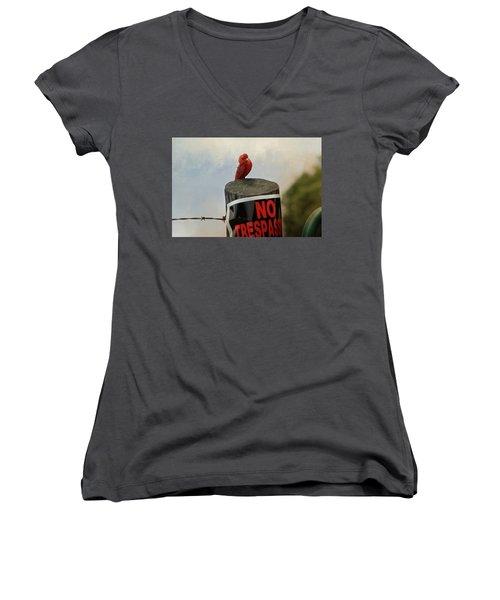 No Trespassing Women's V-Neck T-Shirt (Junior Cut) by TnBackroadsPhotos