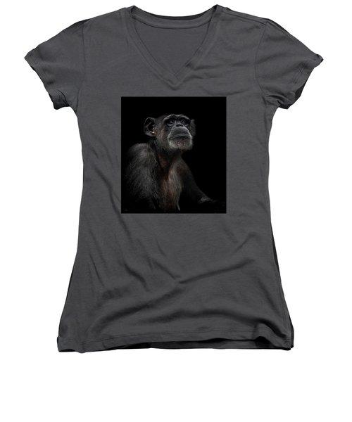 Noble Women's V-Neck T-Shirt (Junior Cut) by Paul Neville