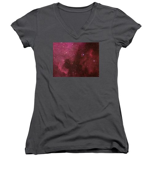 North American And Pelican Nebulas Women's V-Neck (Athletic Fit)