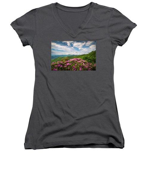 North Carolina Spring Flowers Mountain Landscape Blue Ridge Parkway Asheville Nc Women's V-Neck
