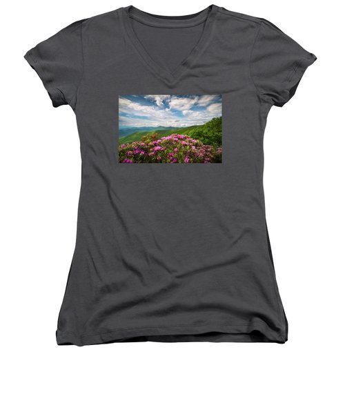 North Carolina Spring Flowers Mountain Landscape Blue Ridge Parkway Asheville Nc Women's V-Neck (Athletic Fit)