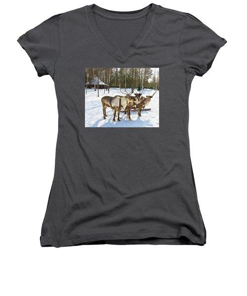 Northern Deers Women's V-Neck T-Shirt (Junior Cut) by Irina Afonskaya