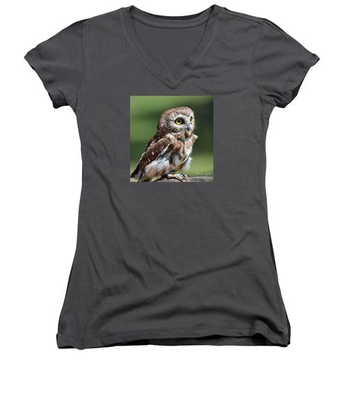 Northern Saw Whet Owl Women's V-Neck (Athletic Fit)