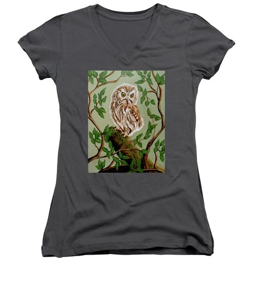 Northern Saw-whet Owl Women's V-Neck T-Shirt (Junior Cut) by Teresa Wing