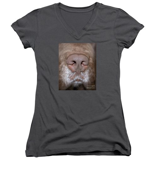 Nosey Women's V-Neck T-Shirt (Junior Cut) by Debbie Stahre