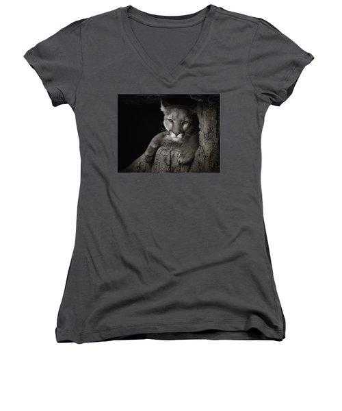 Not A Happy Cat Women's V-Neck T-Shirt (Junior Cut) by Elaine Malott