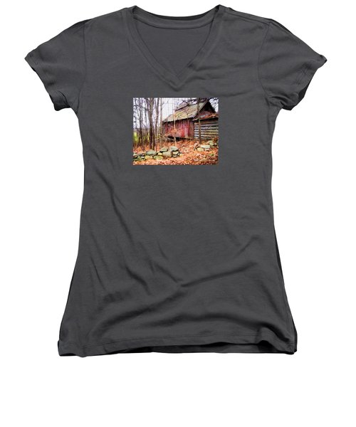 Women's V-Neck T-Shirt (Junior Cut) featuring the photograph November Stark by Betsy Zimmerli