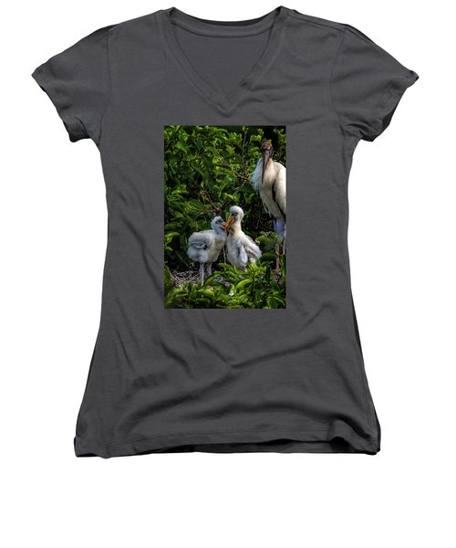 Now, Children... Women's V-Neck T-Shirt (Junior Cut) by Cyndy Doty