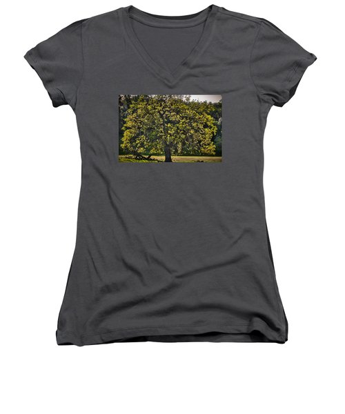 Oak Tree New Green Leaves Women's V-Neck (Athletic Fit)