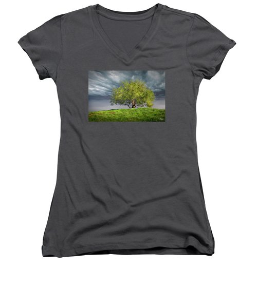 Oak Tree With Tire Swing Women's V-Neck T-Shirt (Junior Cut) by Endre Balogh