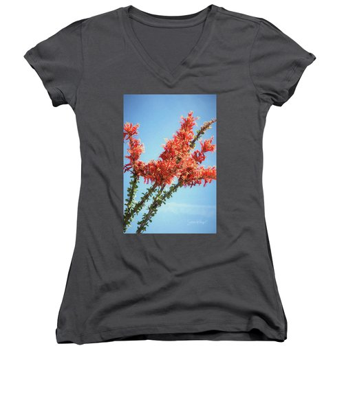 Ocotillo In Bloom Women's V-Neck