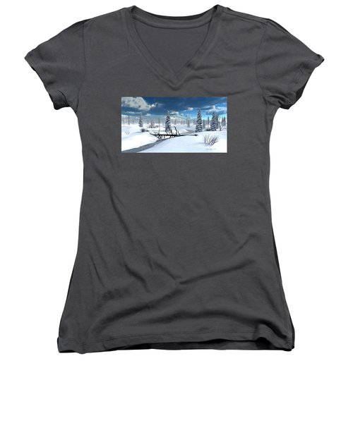 Of Blankets And Sheets Women's V-Neck