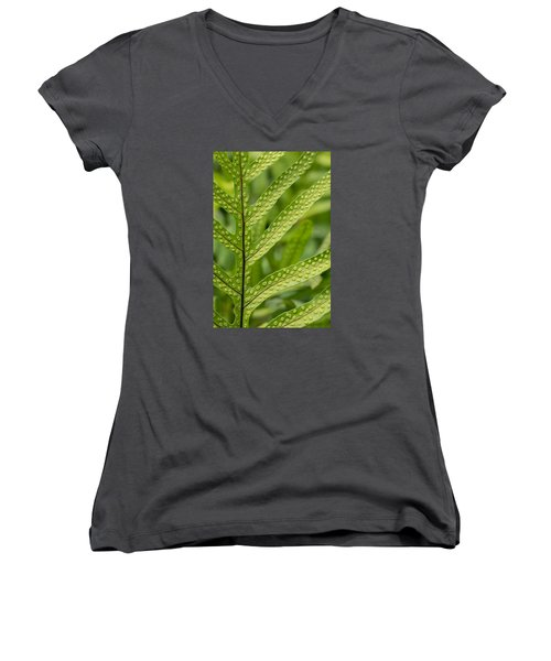 Oh Fern Women's V-Neck T-Shirt (Junior Cut) by Christina Lihani