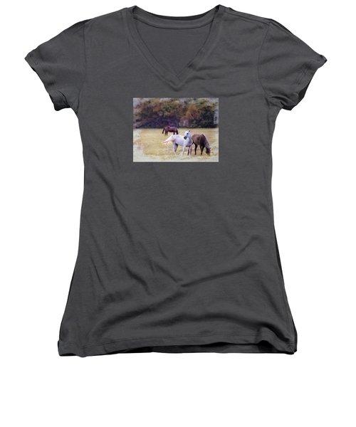Ok Horse Ranch_1c Women's V-Neck (Athletic Fit)